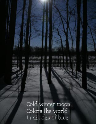 winter-moon.jpg