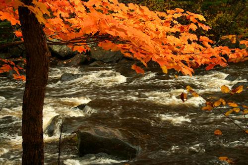 popple-river