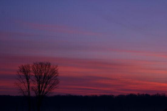 3-17-09-sunrise